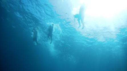 El sol nos acompañó durante todo el día; incluso bajo el agua
