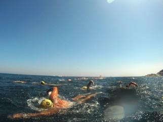 Vies Braves: todo un horizonte para nadar
