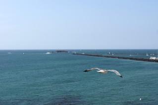La bocana del puerto, con el Fort Brescou al fondo