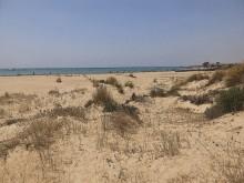 Las dunas de la playa Richelieu
